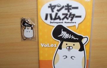 ヤンキーハムスター DVD