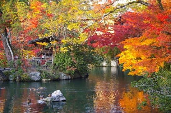 京都 自転車旅
